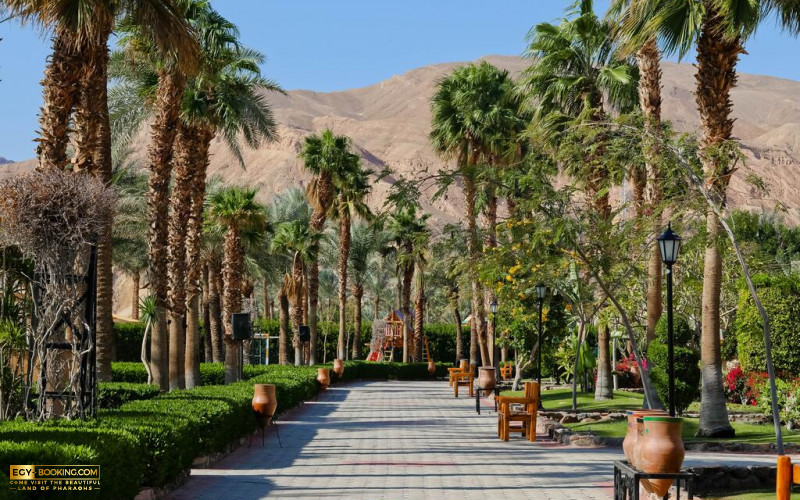 Taba Hotel And Nelson Village