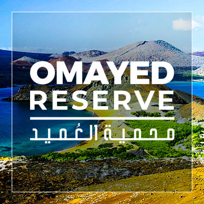 Omayed reserve